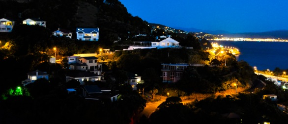 Wellington Night